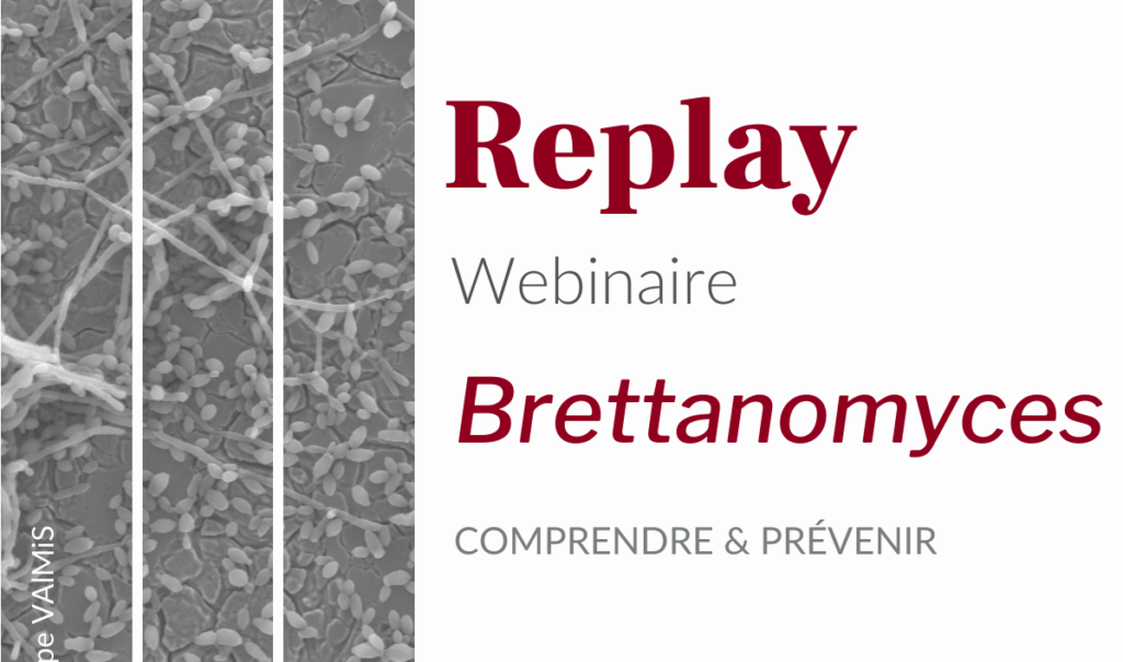 Visuel replay webinaire brettanomyces