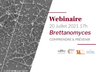 Webinaire Brettanomyces 20 juillet 2021