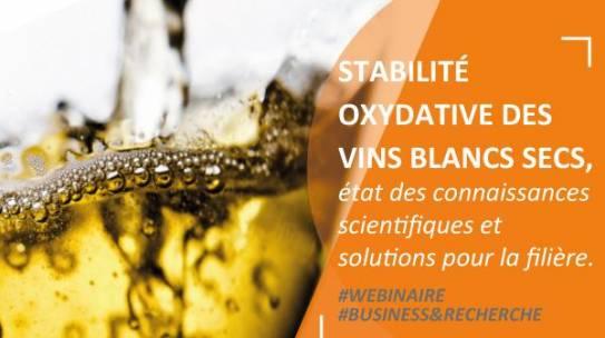 Replay Webinaire – Stabilité Oxydative des Vins Blancs