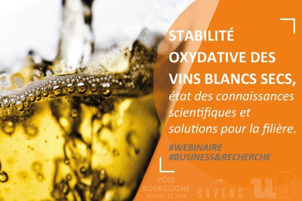 Replay webinaire stabilité oxydative des vins blancs